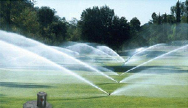 За голф игрища